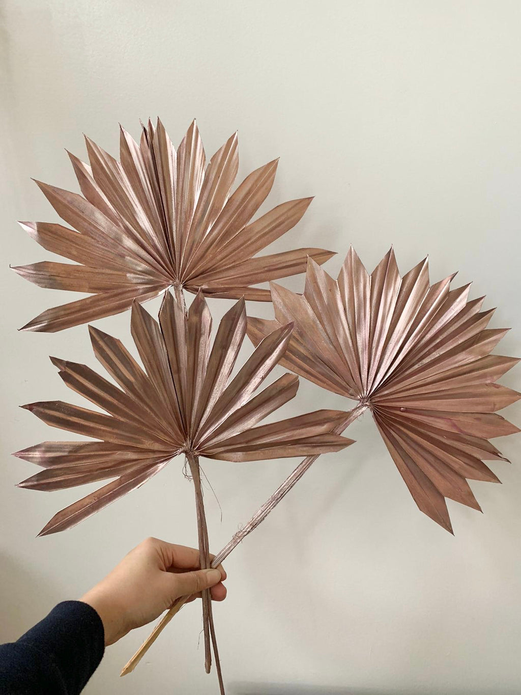 Rose Gold Fan Palms(3 stems)