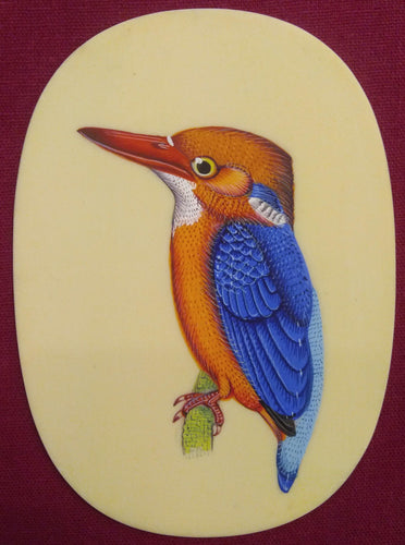KingFisher Bird Home Decor Collection Art