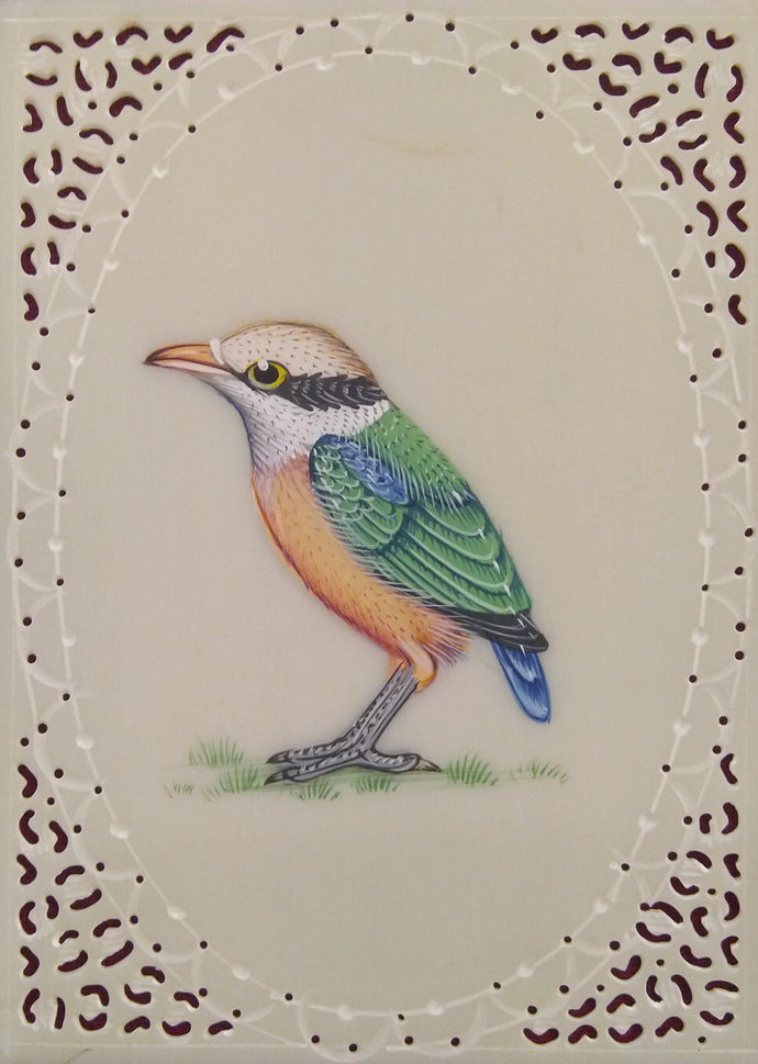 Birds Art Collection Nature Lover
