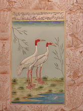 Load image into Gallery viewer, Beautiful Hand Painted Ostrich Bird On Paper Art - ArtUdaipur