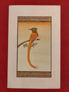 Indian Miniature Painting on Paper
