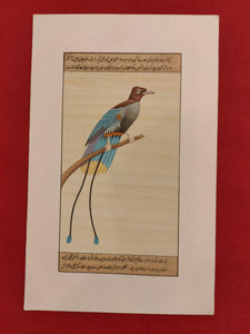 Buy Bird Painting Art Online