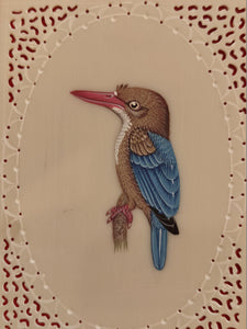KingFisher Bird Art Collection Buy