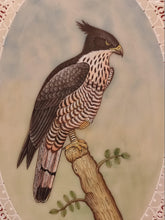 Load image into Gallery viewer, Beautiful Eagle Bird on Synthetic Ivory Hand Painted Painting Art - ArtUdaipur