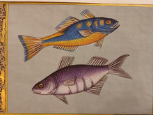 Load image into Gallery viewer, Fish Animal Miniature Painting India Art Nature Paper Aquatic Life - ArtUdaipur