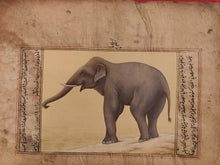 Load image into Gallery viewer, Hand Painted Elephant Animal Miniature Painting India Art Nature Paper WildLife - ArtUdaipur