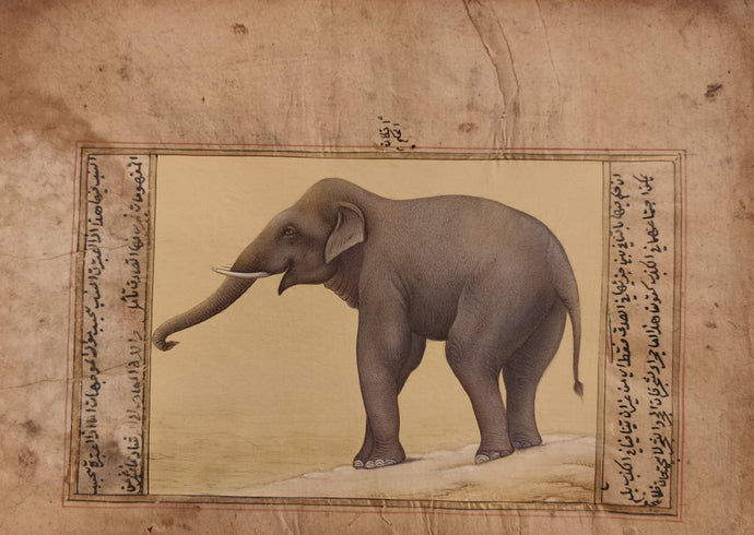 Elephant Old Paper Painting Artwork