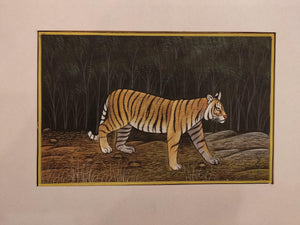 Hand Painted Tiger Animal Miniature Painting India Art Nature Paper WildLife - ArtUdaipur