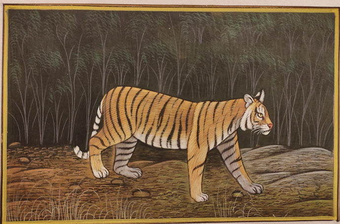 Tiger Animal Painting Art Collection