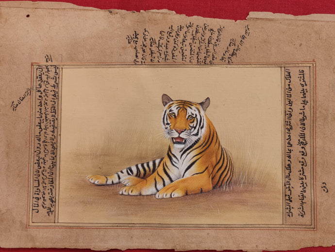 Tiger Painting Animal Art Collection Interior