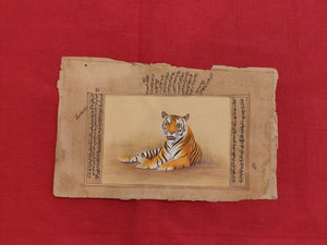 Hand Painted Tiger Animal Miniature Painting India Art Nature on Old Paper - ArtUdaipur