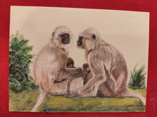 Load image into Gallery viewer, Hand Painted Langur Monkey Animal Miniature Painting India Art WildLife - ArtUdaipur