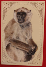 Load image into Gallery viewer, Hand Painted Monkey Animal Miniature Painting India Art Nature Synthetic Ivory - ArtUdaipur