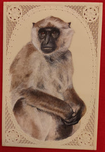Hand Painted Monkey Animal Miniature Painting India Art Nature Synthetic Ivory - ArtUdaipur