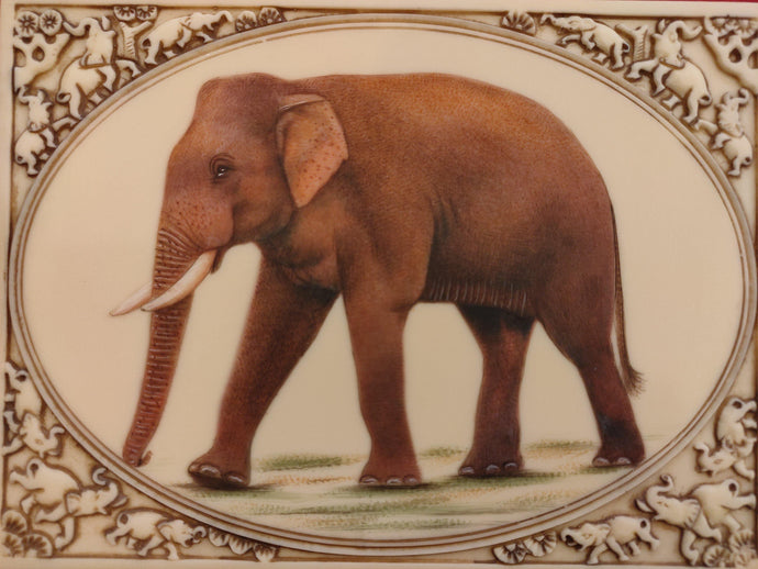 Elephant Painting Artwork Home Decor