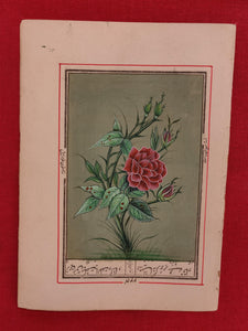 Beautiful Rose on Paper Best Art Collection and Home Decor Paper - ArtUdaipur
