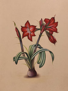 Red Blossom Flower Best Collectible Art Collection - ArtUdaipur