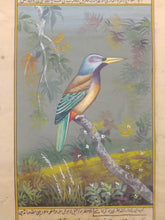 Load image into Gallery viewer, Bird Painting Art Collection