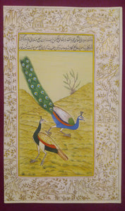 Beautiful Gold Peacock Indian Miniature Painting - ArtUdaipur