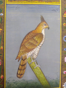 Courage Eagle Bird on Paper Indian Miniature Painting - ArtUdaipur