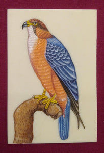Eagle Bird Birds Miniature Painting India Art Synthetic Ivory - ArtUdaipur