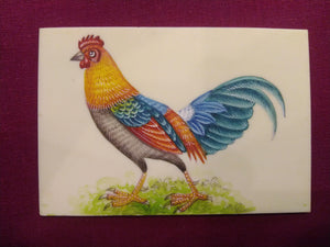 Colorful Hen Chicken Indian Miniature Painting - ArtUdaipur