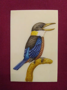 HandPainted Angry KingFisher Bird Indian Miniature Painting - ArtUdaipur
