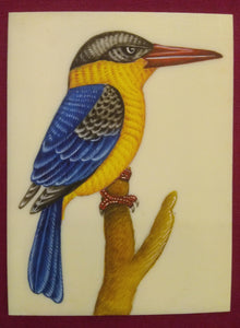 HandPainted KingFisher Bird Miniature Painting on Synthetic Ivory - ArtUdaipur
