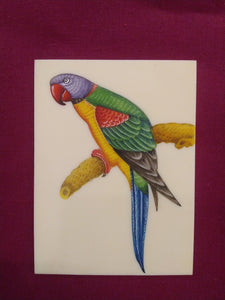 Beautiful Exotic Parrot Bird Painting Indian Miniature Painting - ArtUdaipur