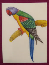Load image into Gallery viewer, Beautiful Exotic Parrot Bird Painting Indian Miniature Painting - ArtUdaipur