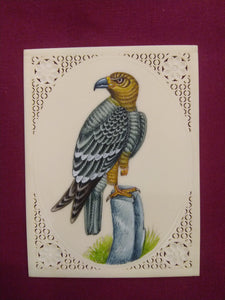 Beautiful Charming Eagle Miniature Painting - ArtUdaipur