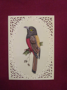 Sparrow Bird on Faux Synthetic Ivory Exotic Miniature Painting - ArtUdaipur