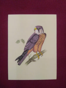 Hand Painted Sparrow Bird Art Collection Indian Painting - ArtUdaipur