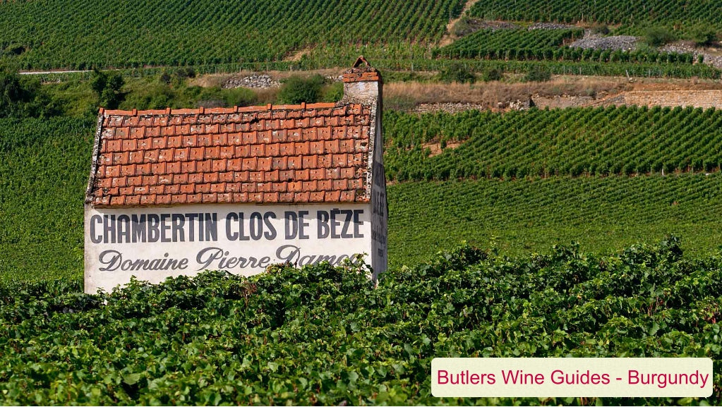Butler's Wine Guide: Burgundy