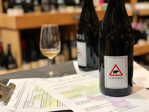 Tasting: Terroir driven, natural wines with Daniel Ramos.