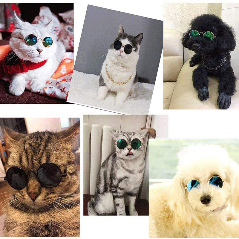 Cute and Funny Pet Sunglasses for Cats or Small Dogs