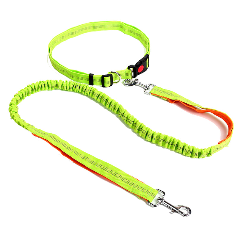 Hands Free Dog Leash for Running, Walking, Hiking, Durable Dual-Handle Bungee Leash