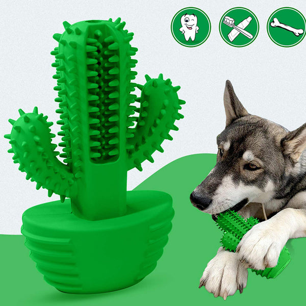 Dog Toothbrush Stick-Puppy Dental Care Brushing Cactus Doggy Teeth Cleaning Massager