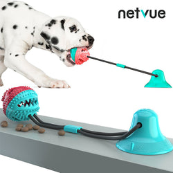Pet Chew Ball Toy with Suction Cup (Red & Blue)