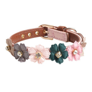Collar for Small Medium Dogs - Barksworld.com