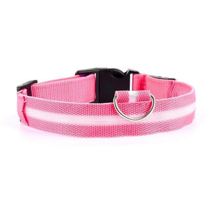 Light Up Dog Leash - Barksworld.com