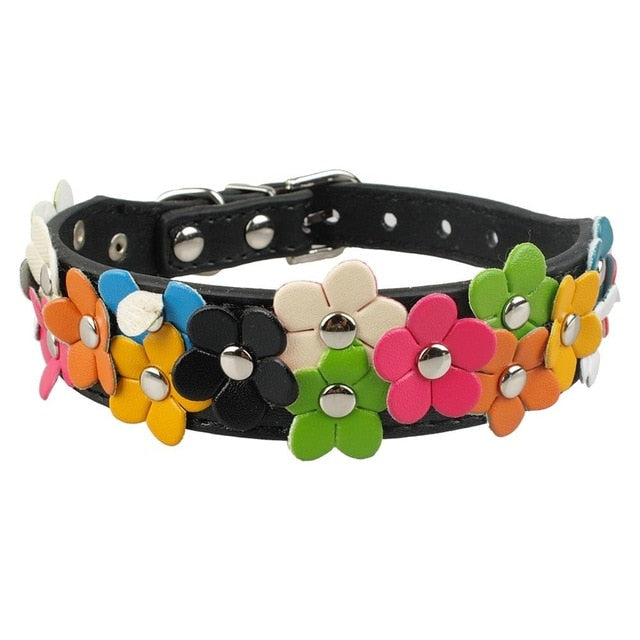 Small Dogs Leather Collar - Barksworld.com