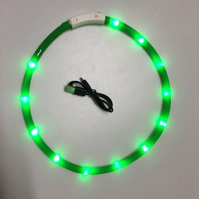 USB Rechargeable LED Dog Collar - Barksworld.com