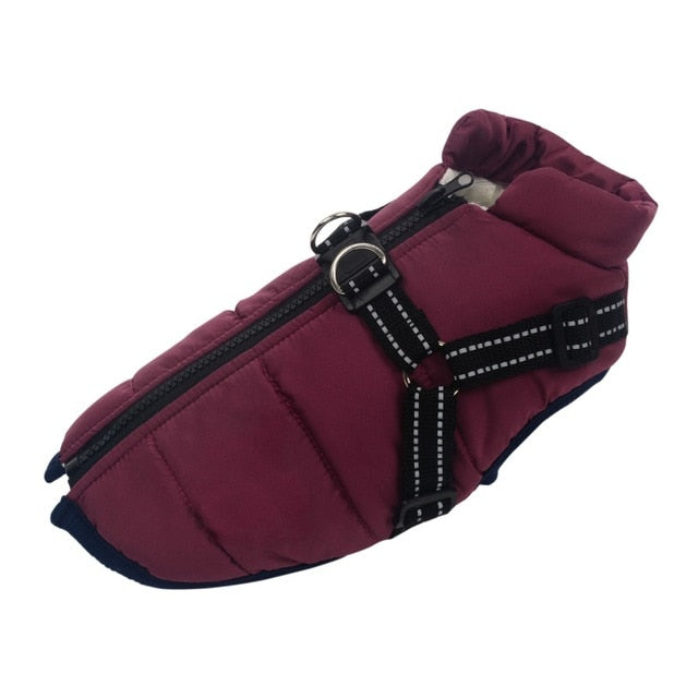 French Bulldog Soft Warm Jacket With Harness - Barksworld.com