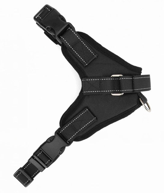 Adjustable Dog Harness - Barksworld.com