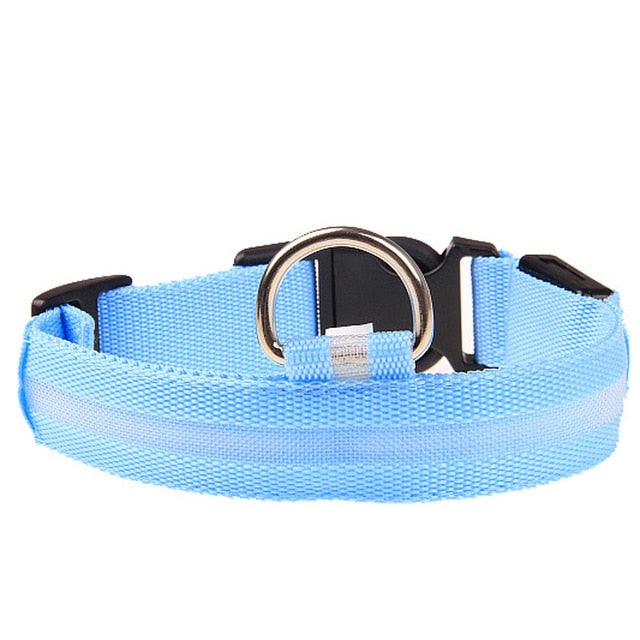 Anti-lost Flashing Nylon Dark Collar For Small Dogs - Barksworld.com