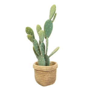 Sass & Belle Sierra Cement Basket Planter