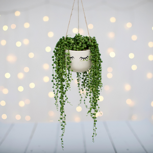 Sass & Belle Eyes Shut Hanging Planter