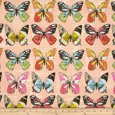 Special Buy - Michael Miller Flutter Fly  in Coral