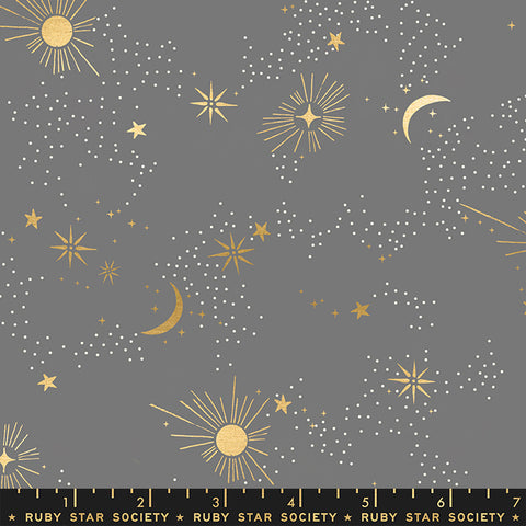 Florida by Sarah Watts - Cosmos in Slate Gray - Metallic
